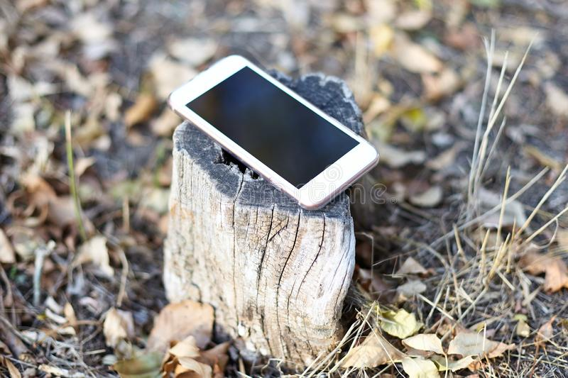 Close up image of light mobile phone with black screen left on the forest stump, nature autumn background. Concept of calm, at the stock photography