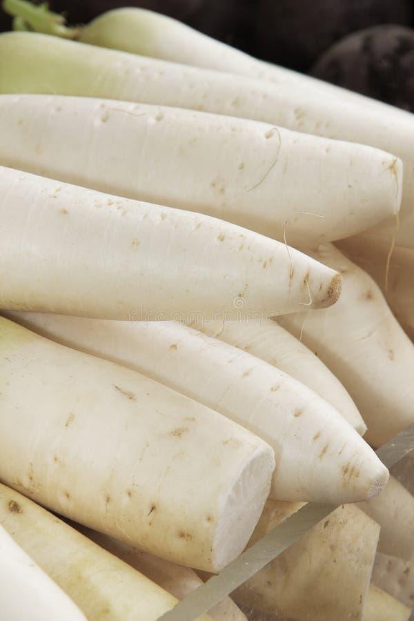 Close up Indian white radishes on the market. stock images