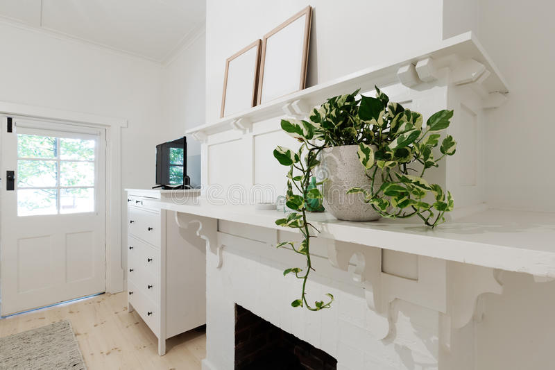 Close up of indoor pot plant in bedroom on a ledge. Close up of indoor pot plant in bedroom on a fireplace ledge stock image