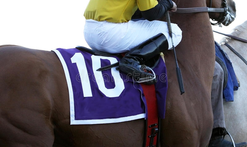 Close Up Jockey on Racehorse. Close up view of jockey with whip on Thoroughbred racehorse stock photos