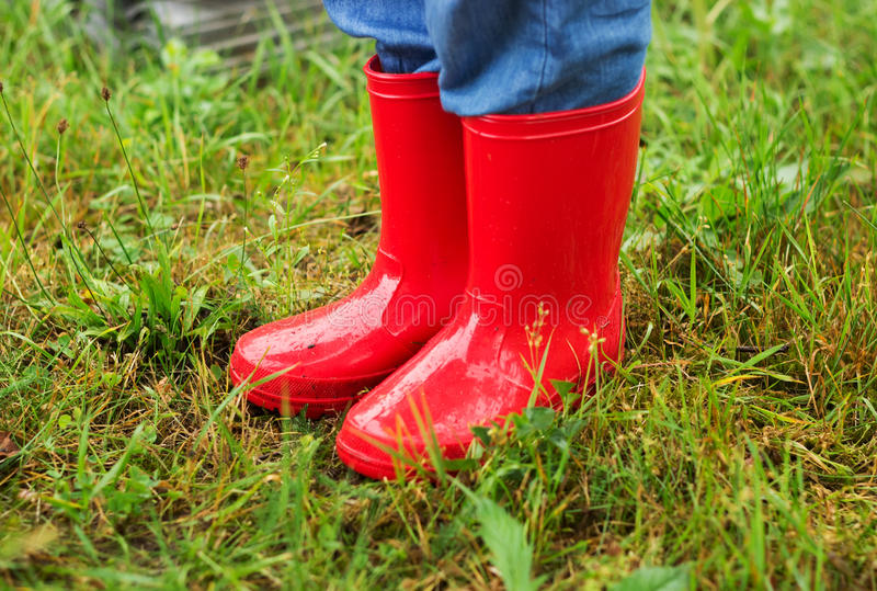 Close up of kid feet walking in red boots in green grass. In rainy day stock photo