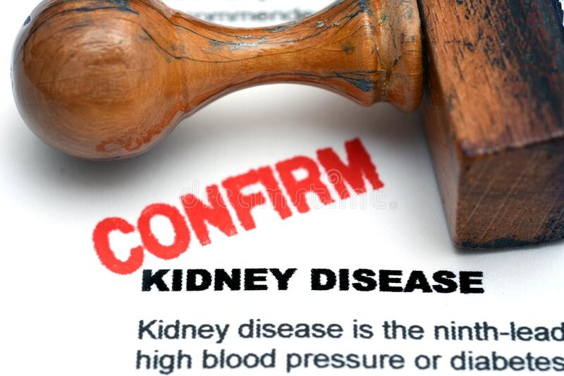 Kidney disease. Close up of Kidney disease royalty free stock photography
