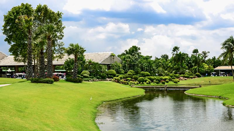 Close up lakeside View. Lakeside View of an thailand Landscape Garden stock image