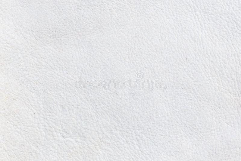 Close up leather texture. For background stock photos