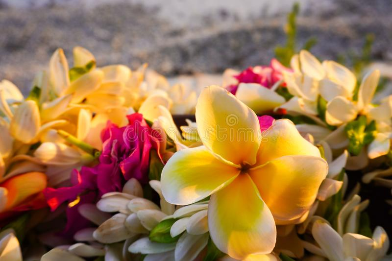 Close-up of a lei of tropical exotic flowers above a sandy beach  in French Polynesia in the South Pacific. Close-up image of a lei of tropical exotic flowers stock photos