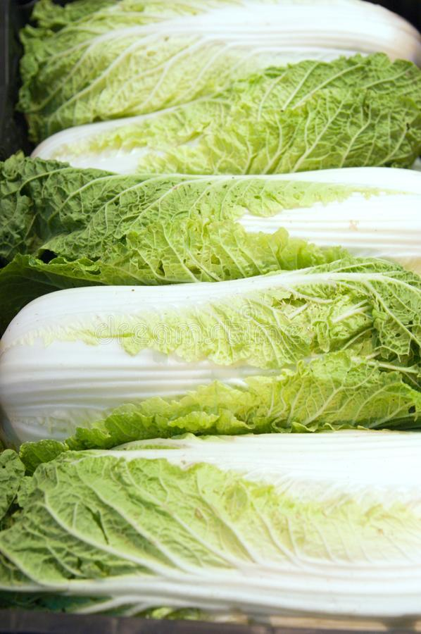 Close up of lettuce stock image