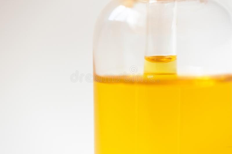 Close-up level oil serum essence in glass bottle. Skincare product. Close-up level oil serum essence in glass bottle on white background. Skincare product royalty free stock photography