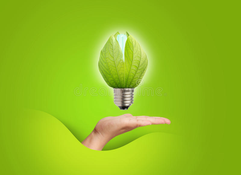 Download Close up of a light bulb stock photo. Image of economic - 25383850