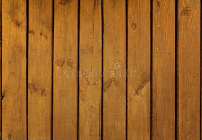 Close-up of light wood texture