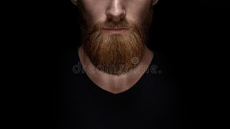 Close up of long beard and mustache of bearded man royalty free stock photo