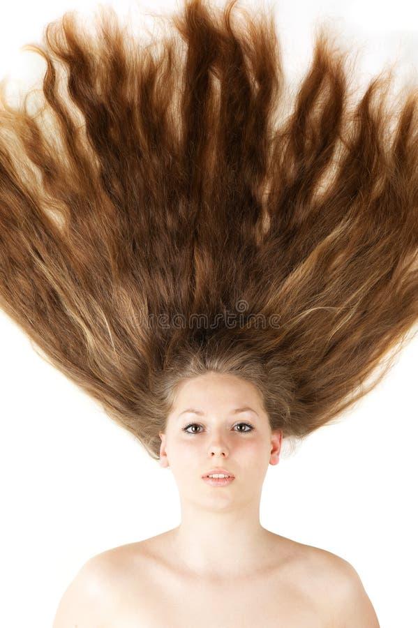 Close up longo bonito saudável do cabelo imagem de stock royalty free