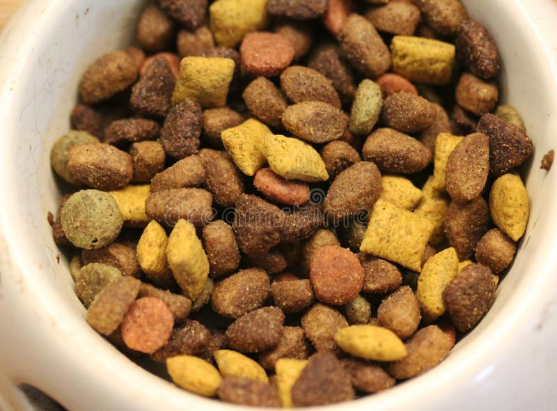 Dry cat food in bowl on wooden background, Pet food on wood surface. stock photos