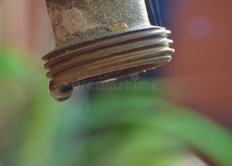 Macro Garden Tap royalty free stock photo