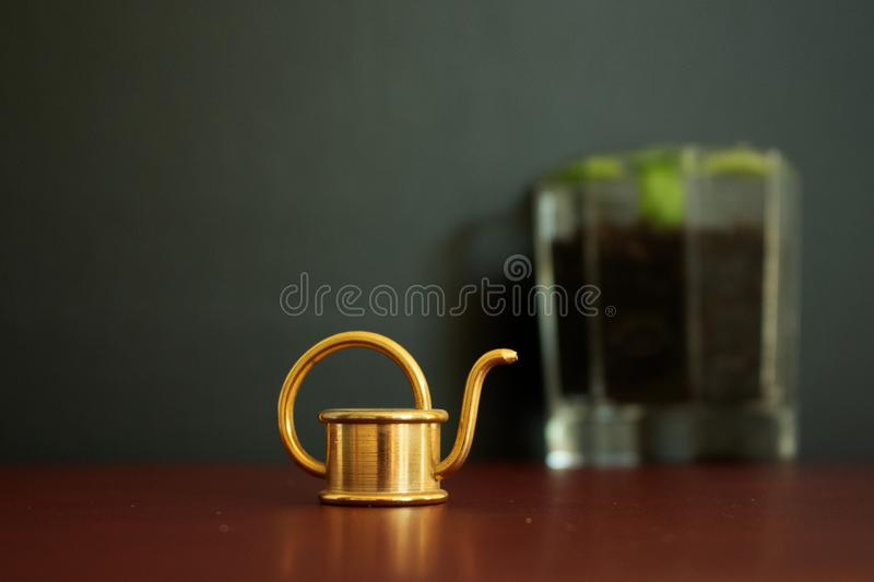Close up of a small golden watering can tool and a glass filled with basil in the background. A close up macro of a small golden watering can tool in the royalty free stock photo