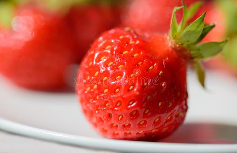 Close-up macrofoto van rode aardbei op de witte plaat met vage rode achtergrond royalty-vrije stock afbeelding