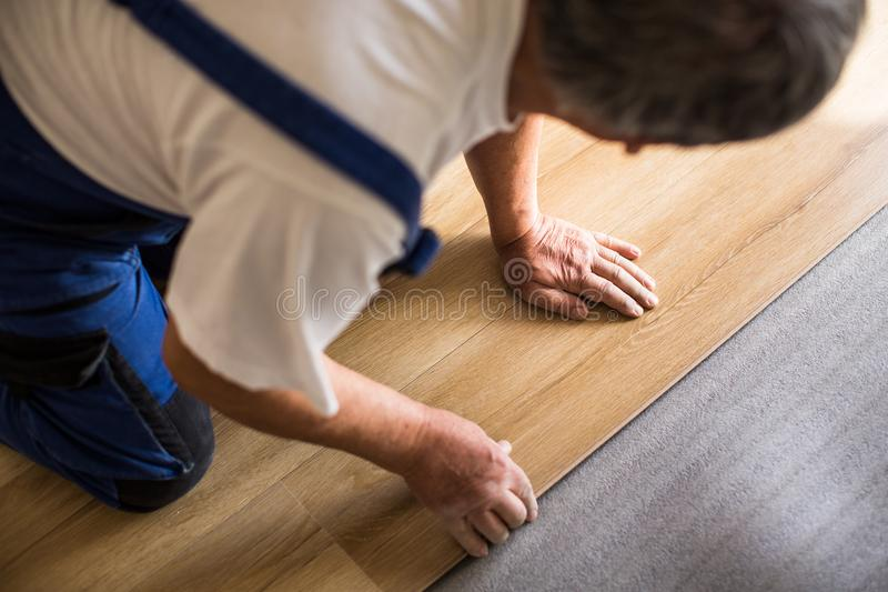 Close up of male hands lying parquet floor board/laminate flooring. DIY, repair, building and home concept - close up of male hands lying parquet floor board/ royalty free stock photos
