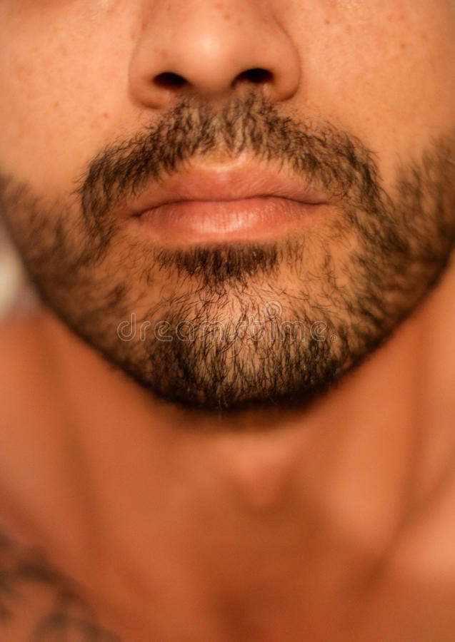 Close up man beard. Close up photo of a human male beard and mustache royalty free stock images