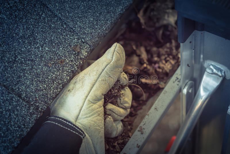 Gutter Cleaning Images Download 841 Royalty Free Photos