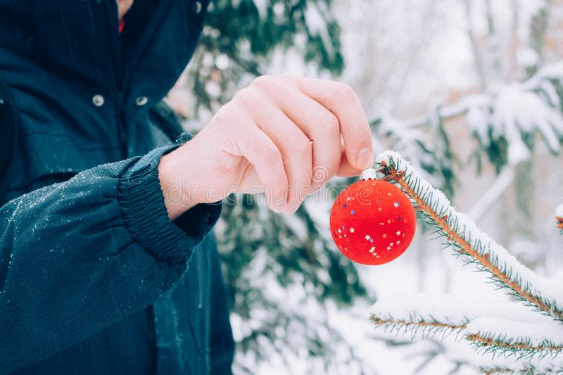 Close up man hand holding Christmas ball in front of snow covered fir Christmas tree, outdoors royalty free stock images