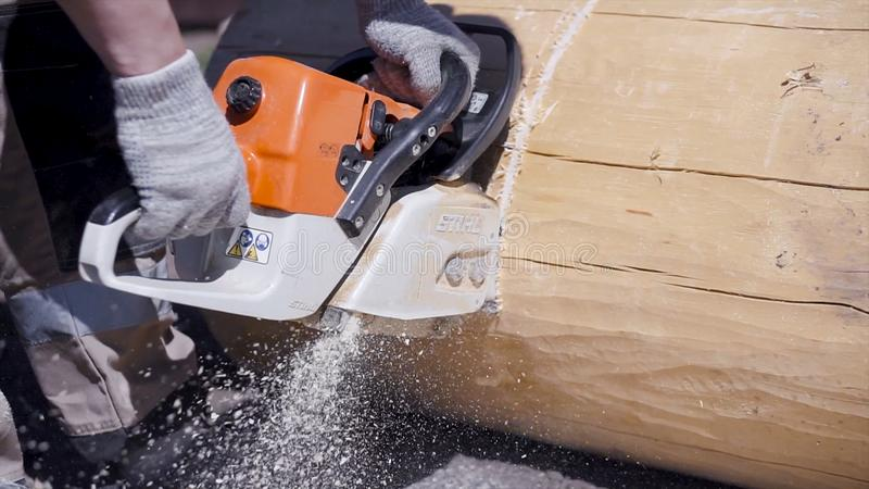 Close-up of man sawing electric saw log. Clip. Carpenter saws cleaned beam for construction with wooden structure royalty free stock image