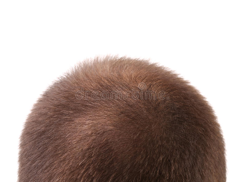 Close up of mans head. stock image