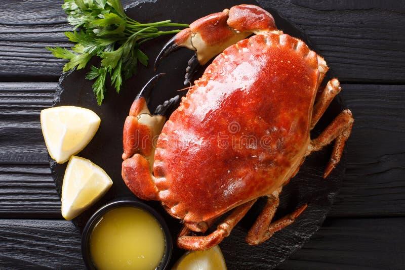 Close-up marrom cozinhado bonito do caranguejo em um fundo preto Hori foto de stock royalty free
