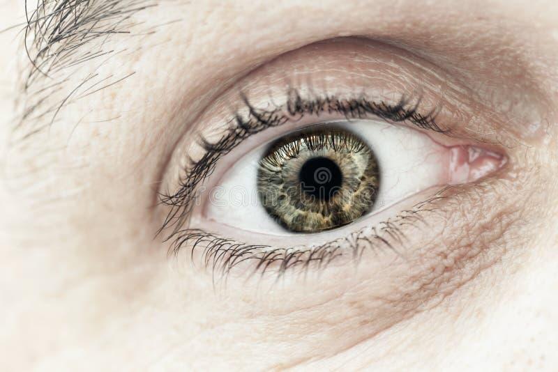 Close up masculino do macro do olho fotografia de stock