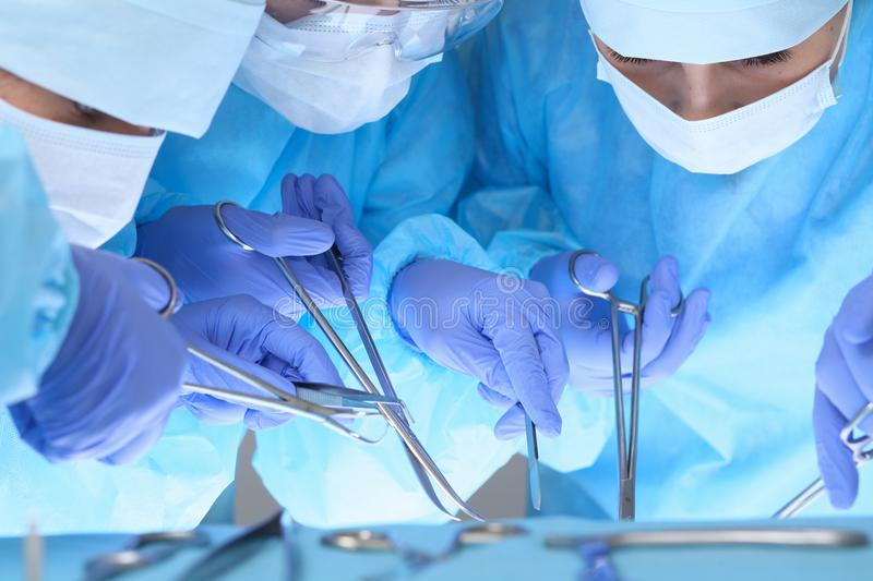 Close-up of medical team performing operation. Group of surgeons at work are busy of patient. Medicine, veterinary or. Healthcare and emergency in hospital royalty free stock images