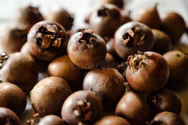 Close-up medlar fruits royalty free stock photography