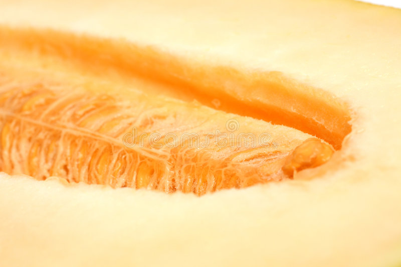 Download Close-up melon background stock image. Image of large - 6317897