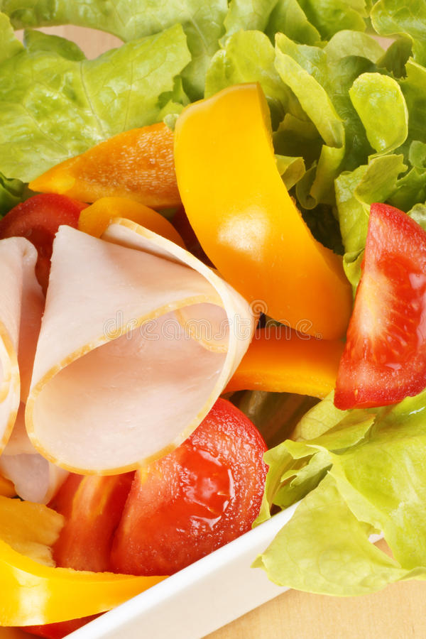 Download Close-up Of A Mixed Salad With Roast Turkey Stock Image - Image: 15456391
