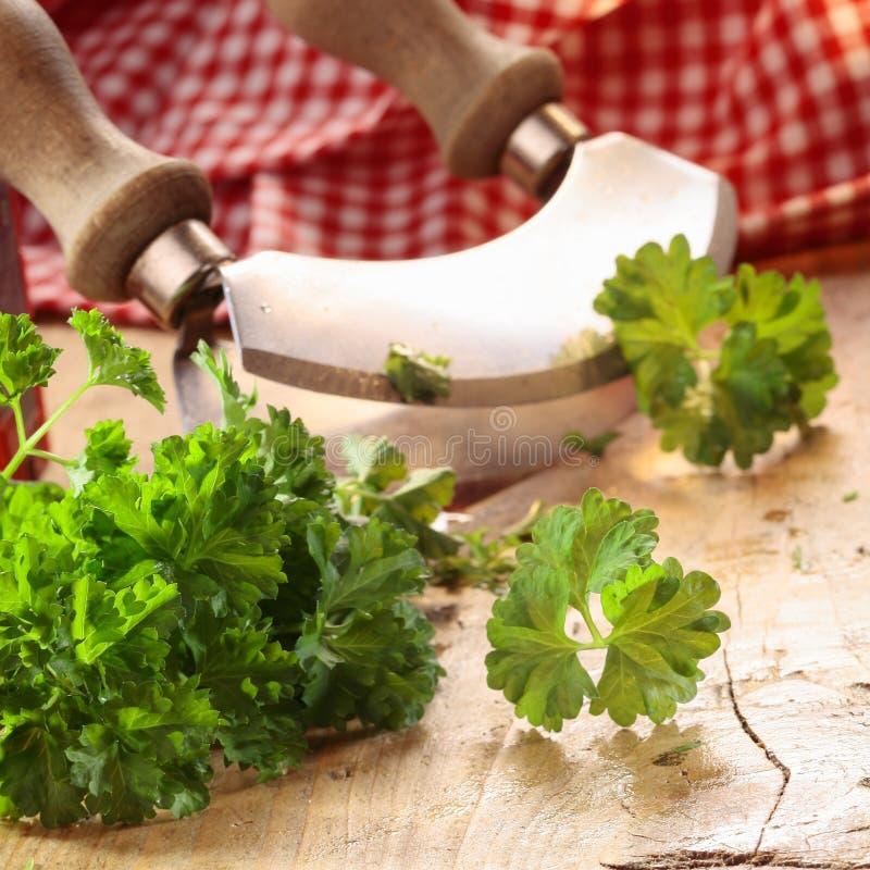 Close up of a modern herb cutter