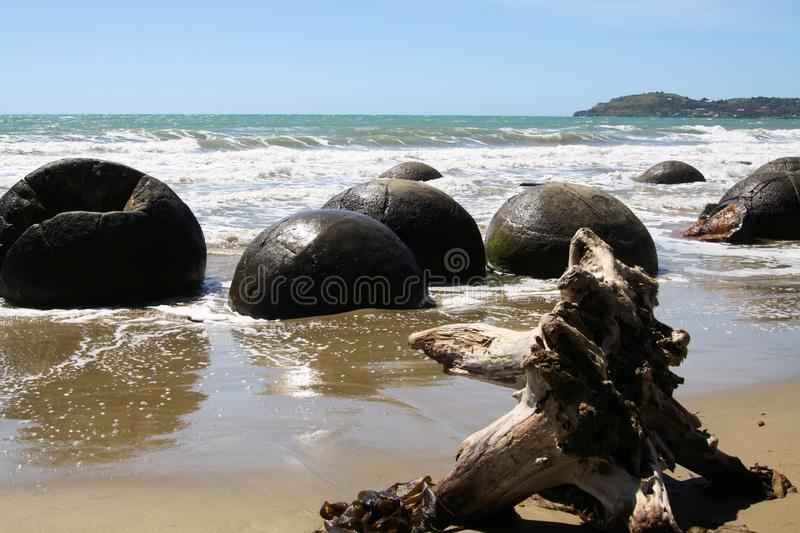Close up of Moeraki spherical boulders of mudstone on the beach washed by surf of the sea, Koekohe Beach royalty free stock photography