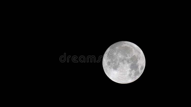 Close up of the moon royalty free stock photo