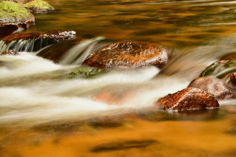 Close-up of a mountain river in the forest. royalty free stock images