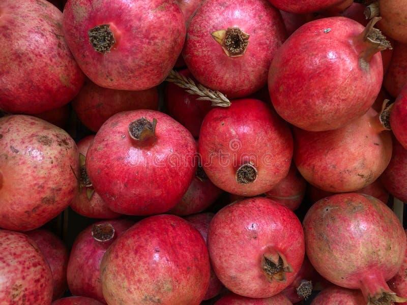 Close up of Multiple Pomegranates stock image