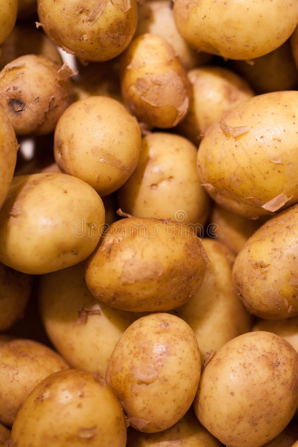 Close-up on new potatoes royalty free stock images