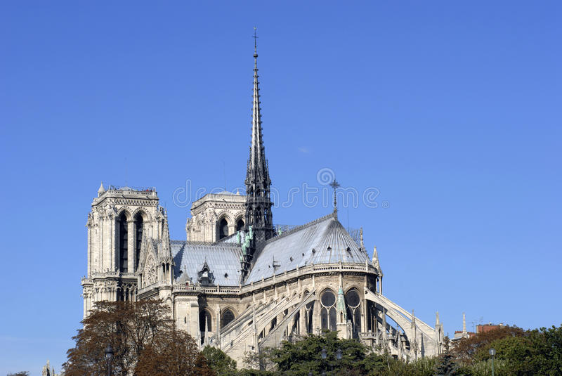 Close-up Notre Dame royalty free stock image
