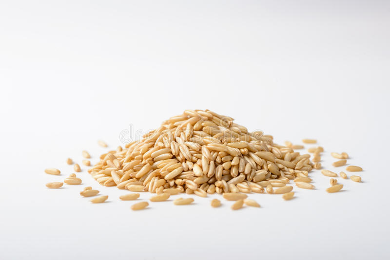Close up of oats royalty free stock photography