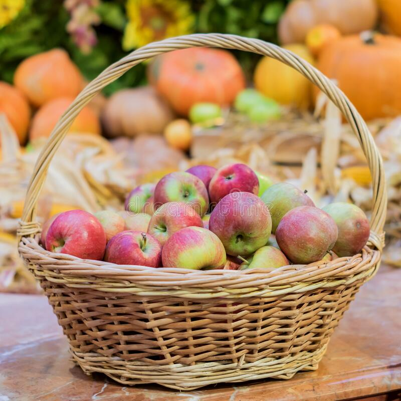 Free Close Up Of Red Ripe Apples In A Basket At The Farmer`s Market Royalty Free Stock Photo - 171346255