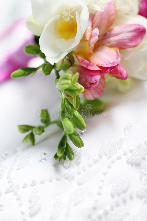 Free Close Up Of The Wedding Dress Detail Royalty Free Stock Image - 19031716