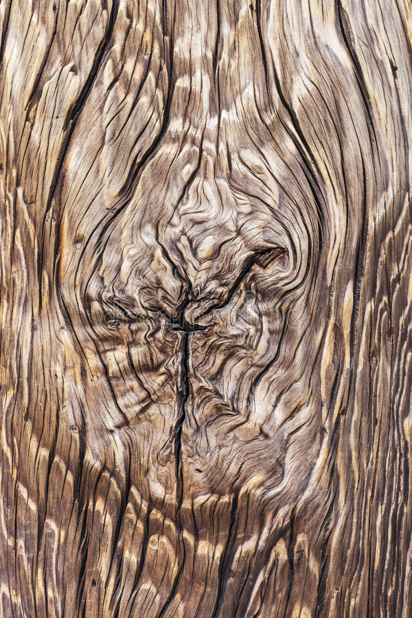 Wooden Post Texture wood texture background royalty free stock image - image: 29899426