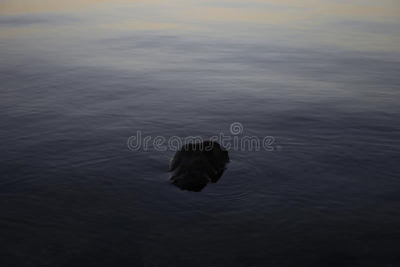 One dark stone in a dark river stock photo