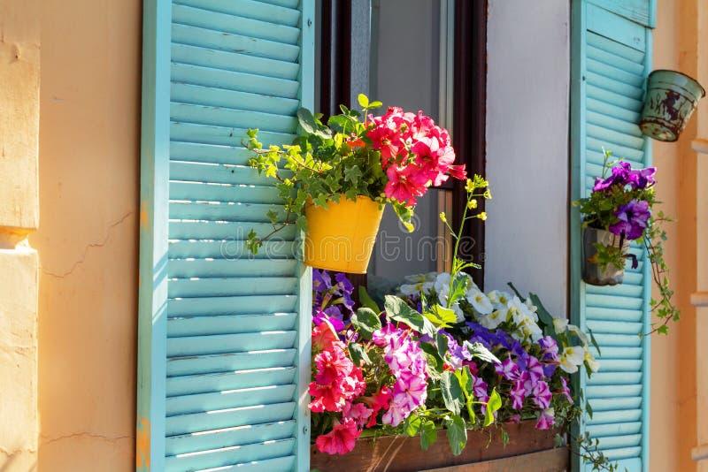 close-up op bloempot bij het venster van oud huis wordt geplaatst dat stock foto's