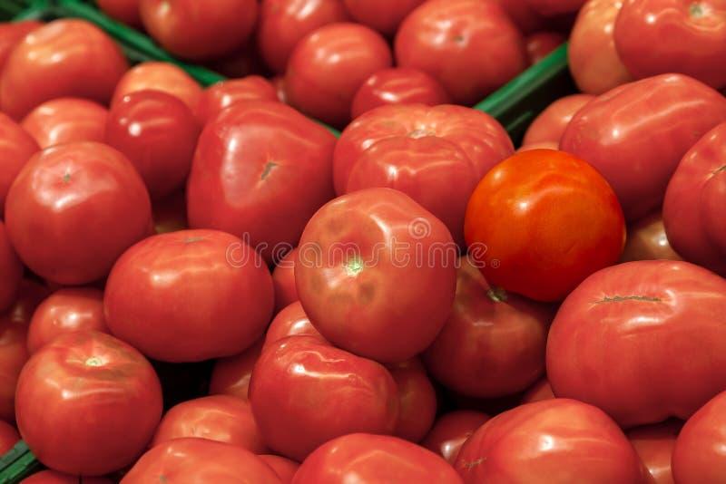 Close-up op een groot aantal tomatenrood van een vers gewas van royalty-vrije stock foto's