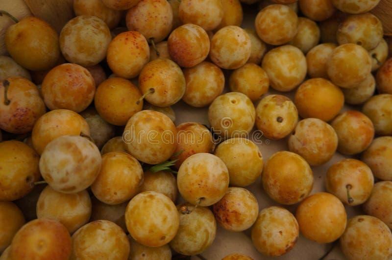 Close-up op fruit stock afbeeldingen