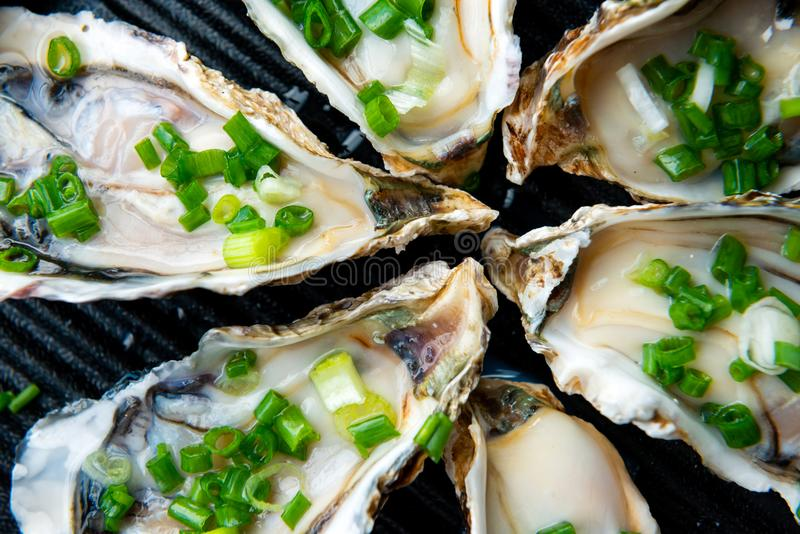Close up open oysters on black plate stock images