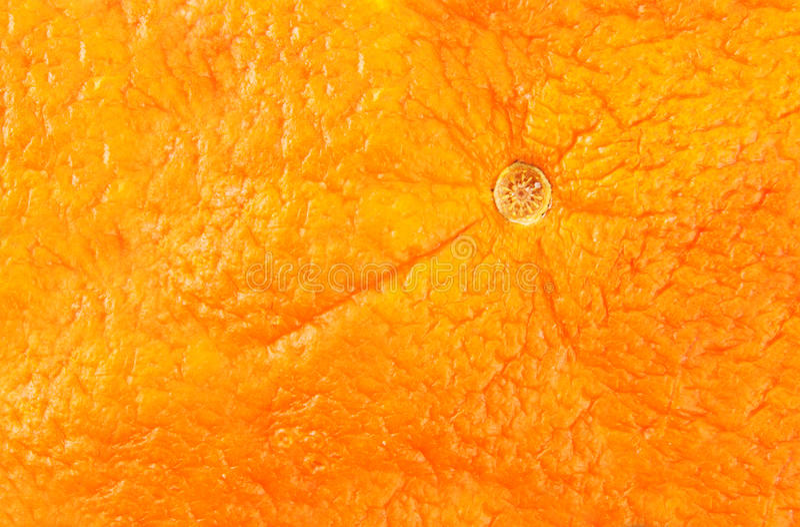 Close-up Of Orange Peel Royalty Free Stock Photo