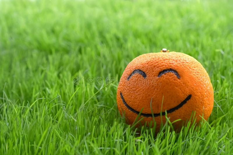 Close up of the  orange with smiling emoji face lays on the green grass stock photography