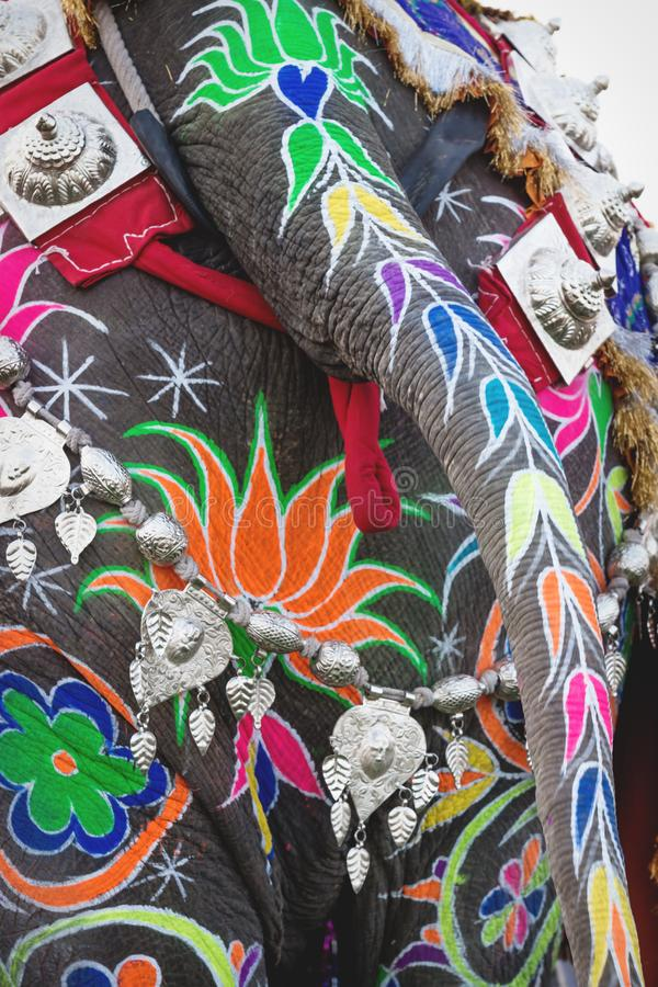 Close up of a painted elephant back for Holi Elephant Festival in Jaipur, Rajasthan, India. Close up of a colorful painted elephant back for Holi Elephant stock image